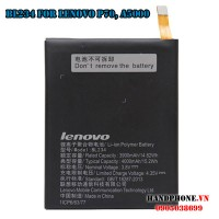 Pin Lenovo BL234 cho P70 A5000 P1M
